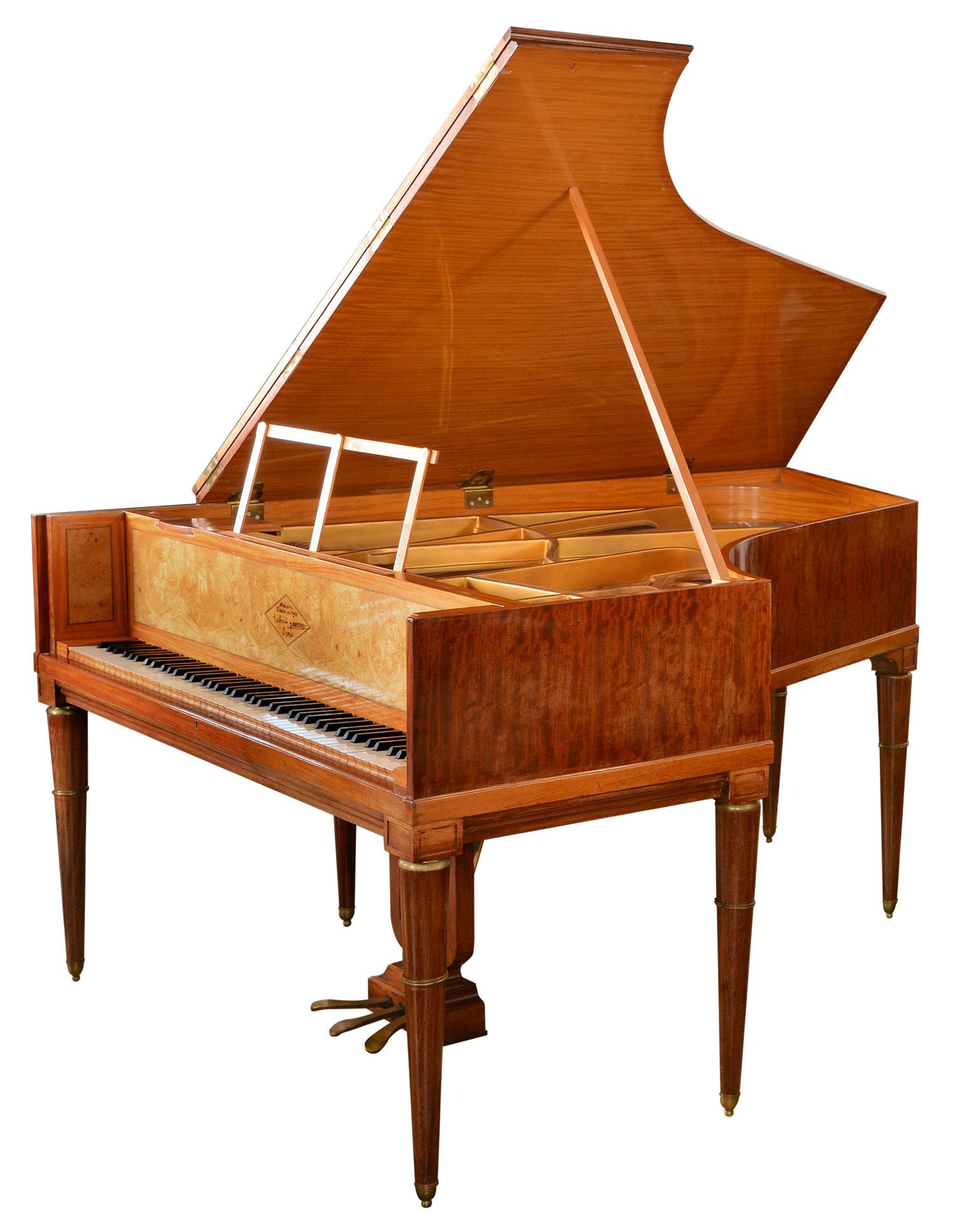 Gabriel Gaveau Art Case Piano